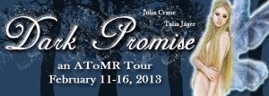 Dark Promise Tour Banner